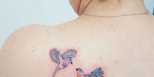 Aves por Jacke Michaelsen