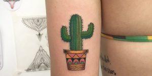 Frase: Vida y Cactus
