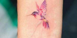 Colibrí alitas rosadas