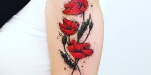 Flores amapolas por Robson Carvalho