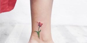 Tulipán por Luiza Oliveira