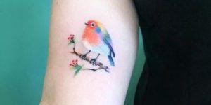 Ave con pelaje multicolor apoyada sobre la rama