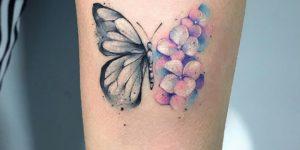 Metamorfosis de una mariposa por Michele Mercuri