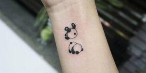 Osos pandas rodando