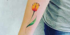 Flor de tulipán por Yasmin Coiado
