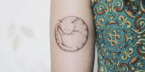 Gato durmiendo por Luciana Periard Art Efeito