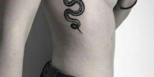 Serpiente en las costillas