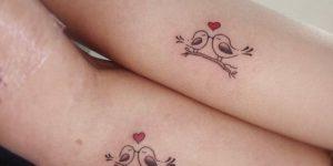 Aves enamoradas
