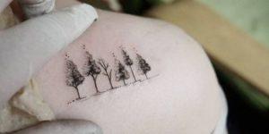 Familia de árboles
