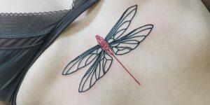 Libélula cuerpo rojo y alas negras