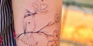 Ave sobre rama con flores por Ana Abrahão
