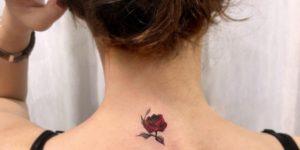 Flor rosa por Dahong Muse