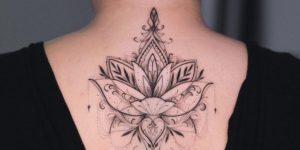Flor de loto y pluma