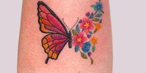Metamorfosis de una mariposa por María Fernanda Ramírez
