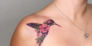 Colibrí con flores rosas por Anna Botyk