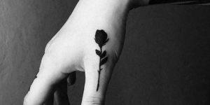 Flor rosa negra